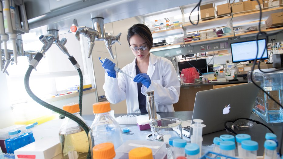 Student uses pipette in Shapiro Lab