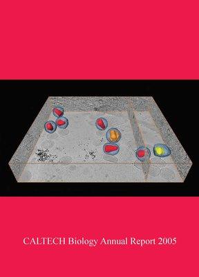 BIO-Annual-Report-2005_Cover.jpg