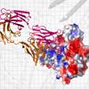 molecular-medicine.png