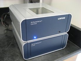 Amaxa 4D-Nucleofector