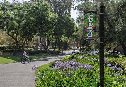 DEI Caltech