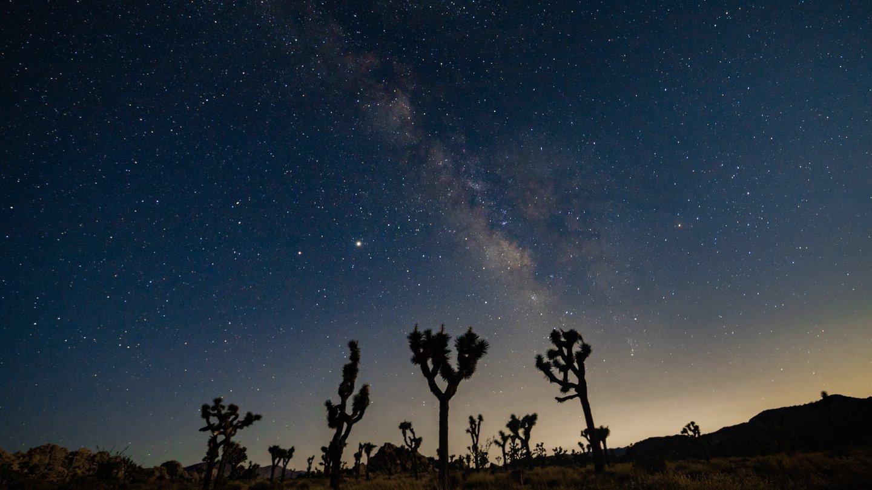 The Milky Way, Joshua Tree, CA