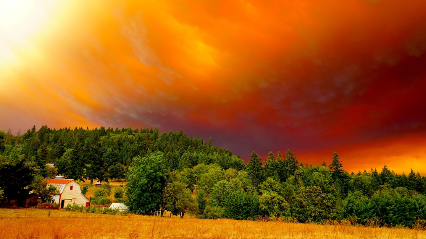 Fire Season, Newberg, Oregon
