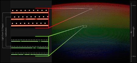First-light spectrum from NEID