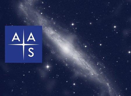 AAS Fellows