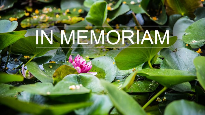 """An image of lily pads in a pond overlaid with text reading """"In Memoriam."""""""