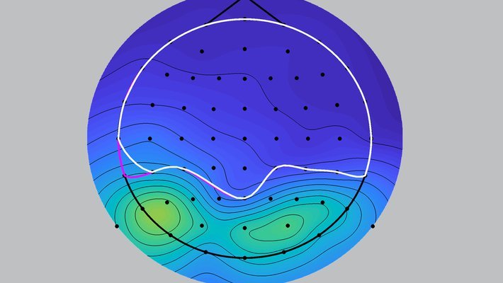 Brainwave data