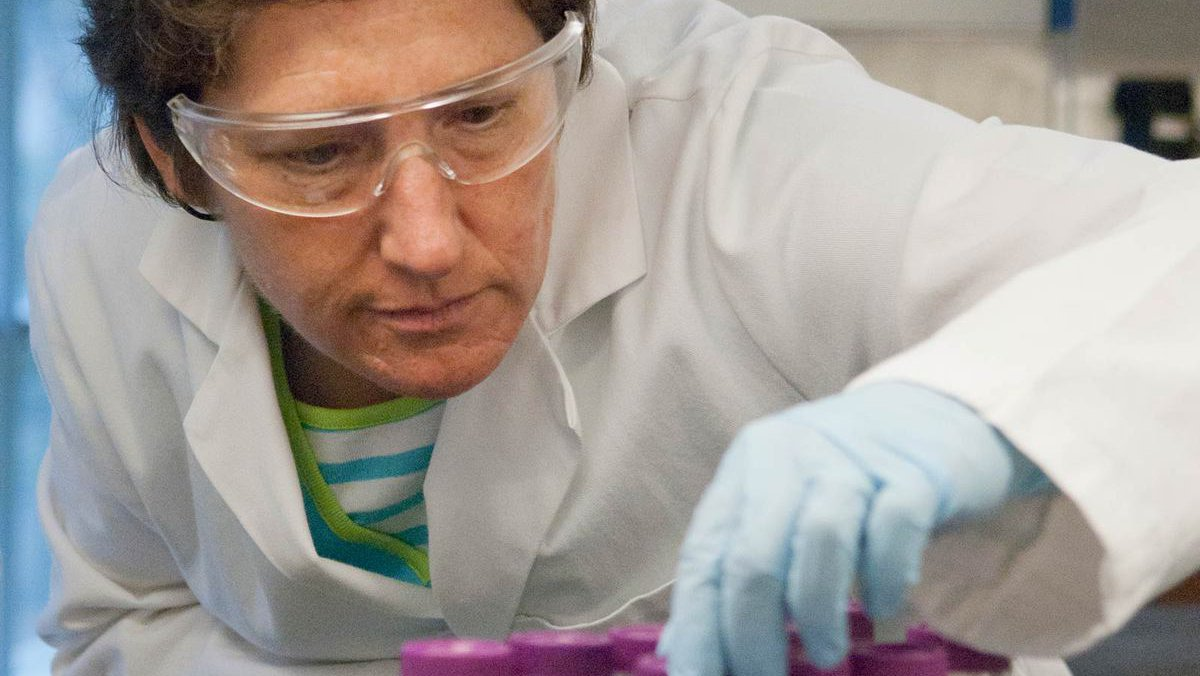 Professor Julia Kornfield examines laboratory equipment.