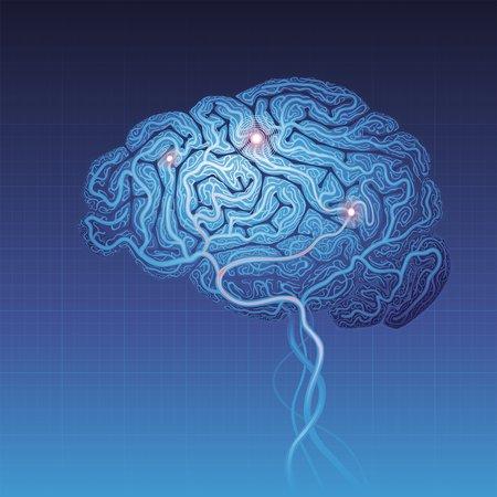 Artwork of the brain.