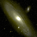 The Andromeda galaxy, as seen with the new PTF camera on the Samuel Oschin Telescope at Palomar Observatory